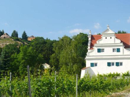 Bennoschlösschen in der Oberlößnitz