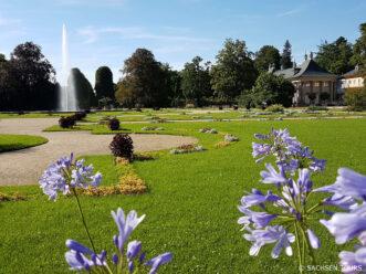 Schloss Pillnitz - Park