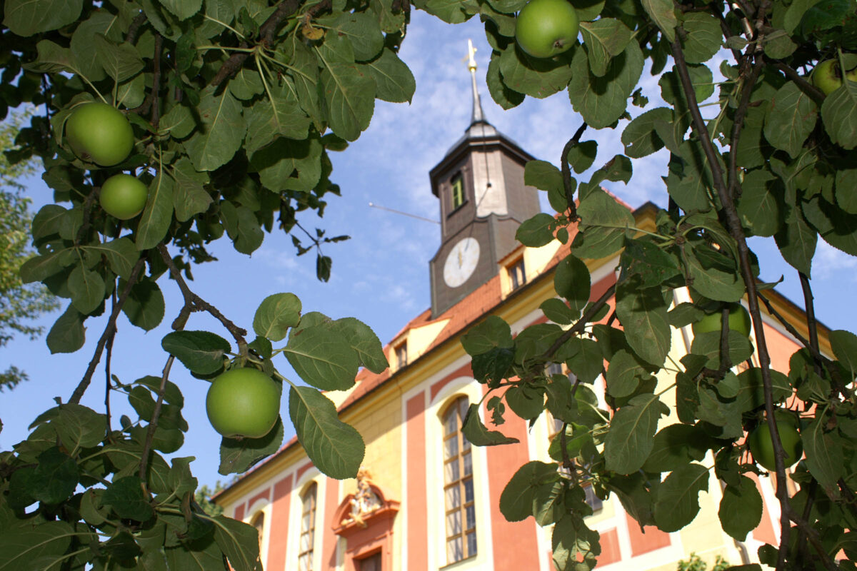 Versteckt - Weinbergkirche Pillnitz