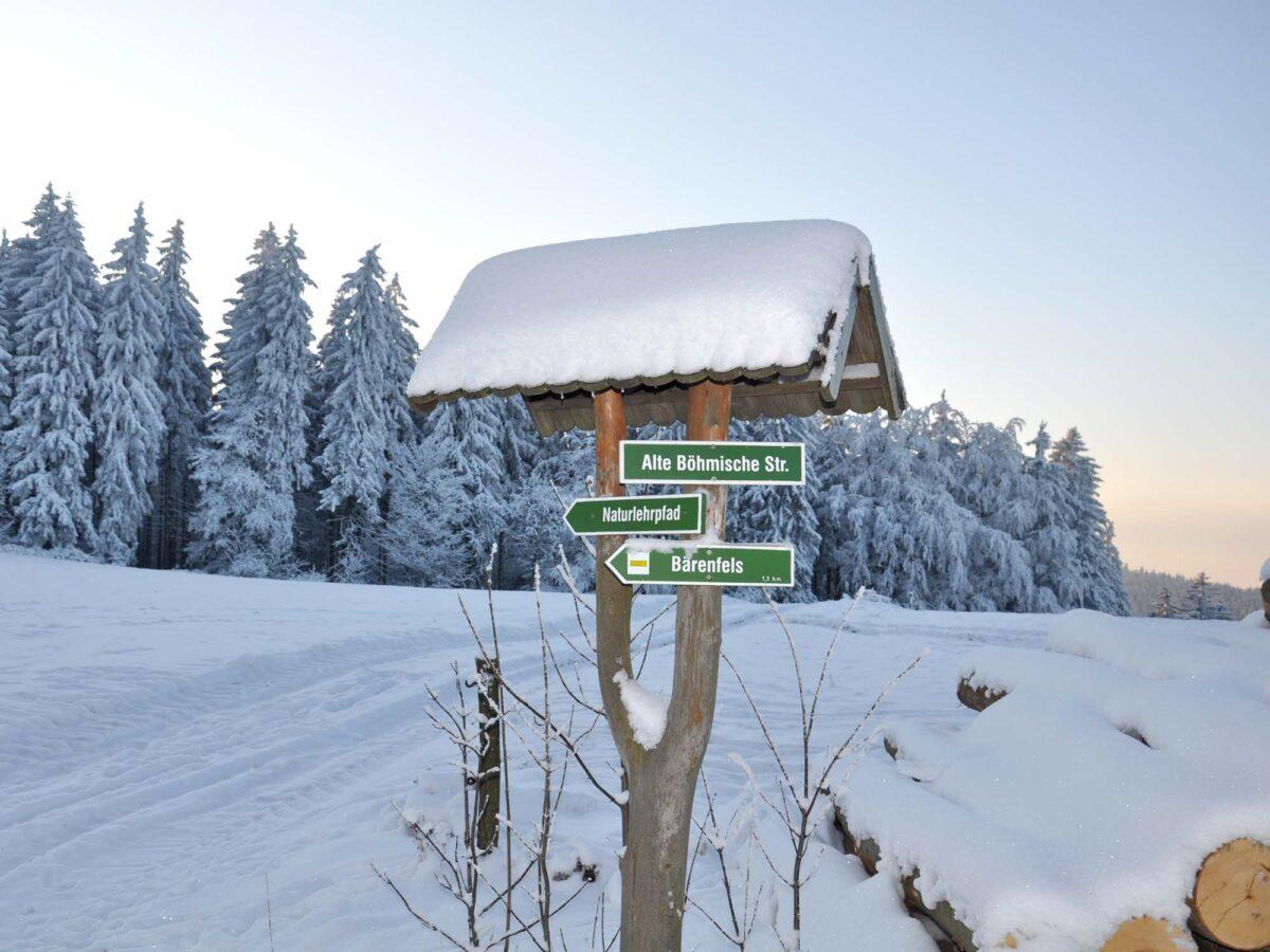 Winter in Bärenfels - Schneewanderungen